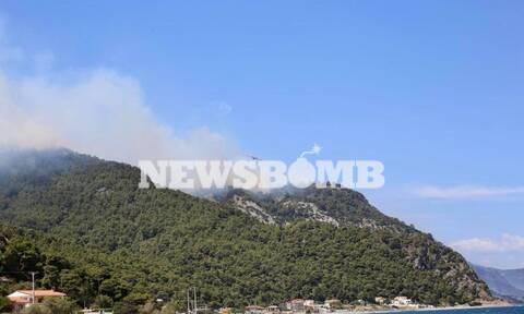 Φωτιά ΤΩΡΑ στην Κορινθία: Κύκλωσαν την περιοχή οι φλόγες - Συγκλονιστικές εικόνες