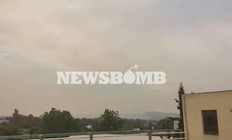 Φωτιά ΤΩΡΑ: Αποπνικτική η ατμόσφαιρα στην Αθήνα – Καπνός και στάχτες σε αυτοκίνητα και μπαλκόνια