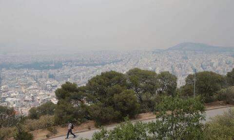 Φωτιά στον Σχίνο: Οι συγκεντρώσεις σωματιδίων στην ατμόσφαιρα αυξήθηκαν κατά δέκα φορές