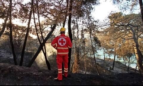 Ελληνικός Ερυθρός Σταυρός: Στο πλευρό των πυρόπληκτων - Σταθμός Πρώτων Βοηθειών στο Αλεποχώρι