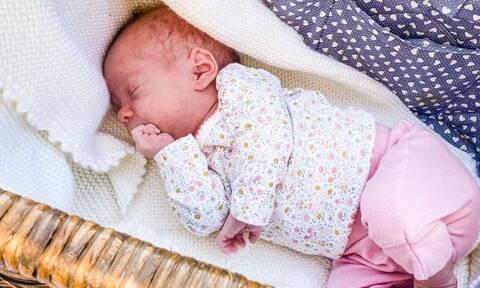 Μωρά μέσα σε καλάθι - Οι φώτο θα σας φτιάξουν την μέρα