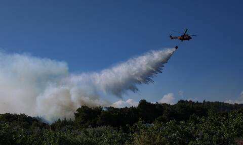 Φωτιά στο Σχίνο: Στάχτη 55.000 στρέμματα - Οι συνθήκες που δημιούργησαν «ακραία φαινόμενα»