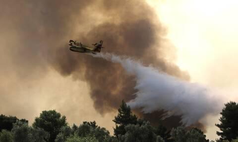 Πυρκαγιές: Οι επικίνδυνες περιοχές στην Αττική – Τα νέα εναέρια μέτρα πρόληψης