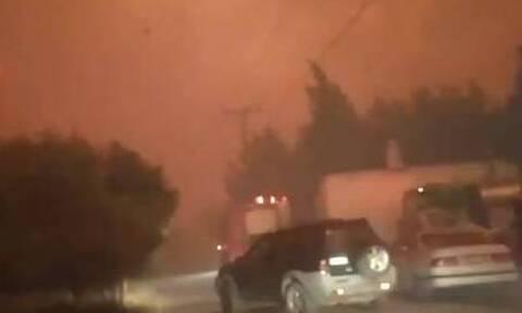 Φωτιά στα Γεράνεια Όρη: Βίντεο ντοκουμέντο - Στιγμές τρόμου για πυροσβέστες και πολίτες στις φλόγες