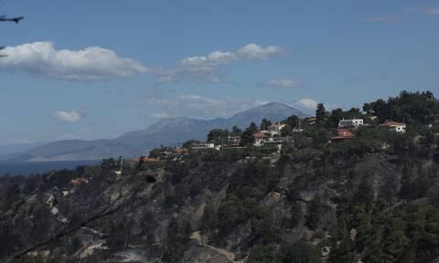 Φωτιά στα Γεράνεια Όρη: Η πιο καταστροφική δασική πυρκαγιά της τελευταίας δεκαέτιας στην Ελλάδα