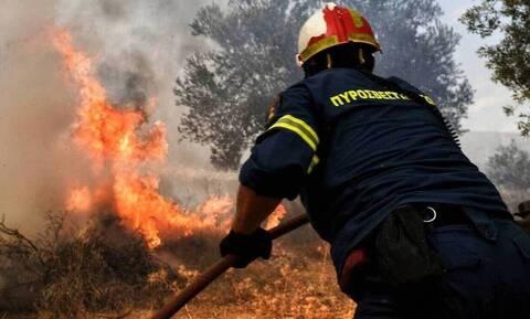 Φωτιά ΤΩΡΑ στην Κερατέα: Κοντά στα σπίτια οι φλόγες - Εκκενώθηκε οικισμός
