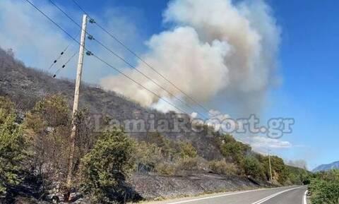Φωτιά στη Φθιώτιδα: Απειλούνται σπίτια - Διακοπή της κυκλοφορίας στην εθνική οδό