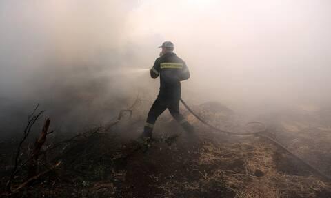 Φωτιά ΤΩΡΑ: Πύρινος εφιάλτης σε Φθιώτιδα και Κορινθία – Απειλούνται σπίτια, έκλεισε η Εθνική Οδός