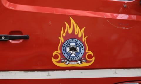 Υπό πλήρη έλεγχο η πυρκαγιά στο Καλαμάκι Κορινθίας