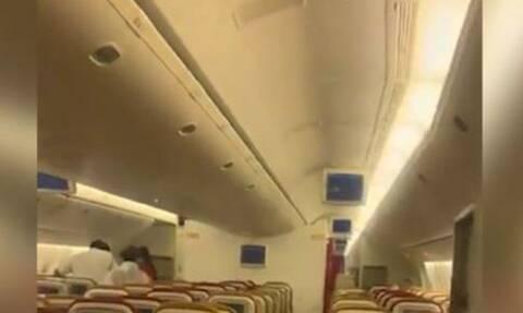 Χαμός σε πτήση: Αναγκαστική προσγείωση αεροσκάφους λόγω... νυχτερίδας (vid)