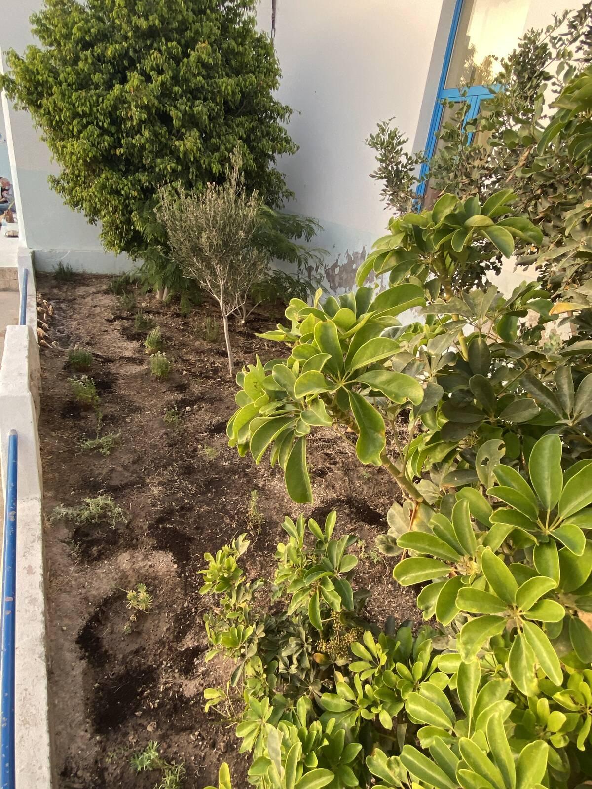 Βοτανικός κήπος Κίμωλος