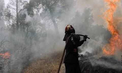 Φωτιά: Πυρκαγιά στην περιοχή των Τεμπών