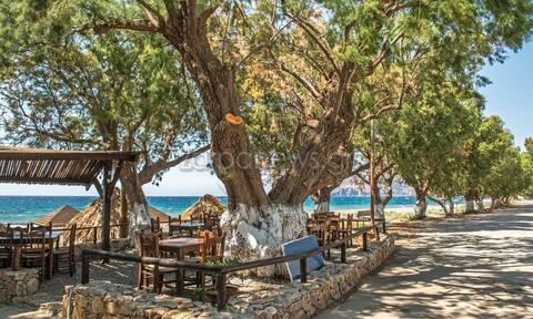 Οι εικόνες της ντροπής από την Κρήτη (pics)