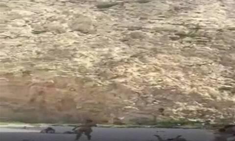 Βίντεο – ΣΟΚ: Η θανάσιμη πτώση τουρίστριας στο Ναυάγιο το 2017 – Σκληρές Εικόνες