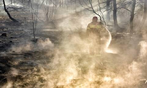 Φωτιά ΤΩΡΑ: Συναγερμός στο Λαύριο