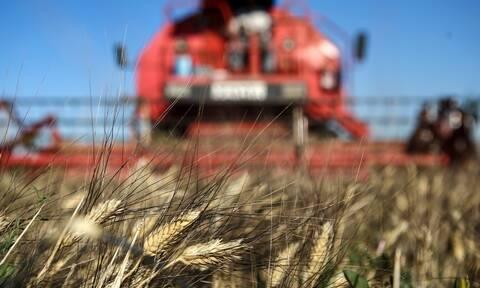 e-ΕΦΚΑ: Αυτές είναι οι 10 ηλεκτρονικές υπηρεσίες για αγρότες