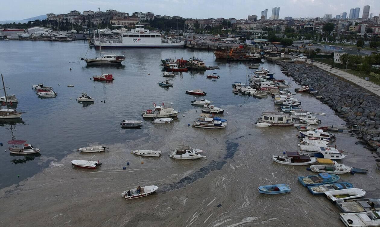Τουρκία: Πόσο επικίνδυνη είναι η βλέννα στη θάλασσα του Μαρμαρά - Τι δείχνουν τα δείγματα