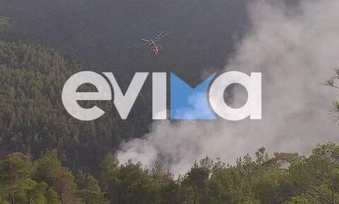 Φωτιά: Μεγάλη πυρκαγιά στην Εύβοια, μεταξύ Πηλίου – Μαντουδίου