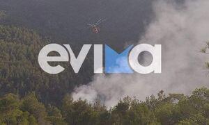 Φωτιά ΤΩΡΑ: Μεγάλη πυρκαγιά στην Εύβοια, μεταξύ Πηλίου – Μαντουδίου