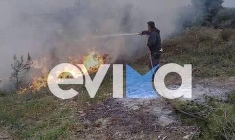 Φωτιά ΤΩΡΑ Γούβες Ιστιαία
