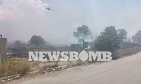 Φωτιά στον Ασπρόπυργο: «Δεν αφήνω να περάσει κανένας» - Τι λέει ο Δήμαρχος στο Newsbomb.gr