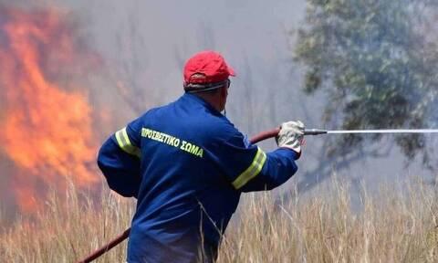 Φωτιά ΤΩΡΑ στο Μανδράκι της Ύδρας