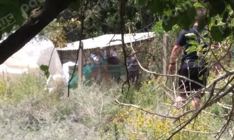Ρεπορτάζ Newsbomb.gr: Πτώση αεροπλάνου στην Ηλεία – Το σχέδιο πτήσης των δύο πιλότων