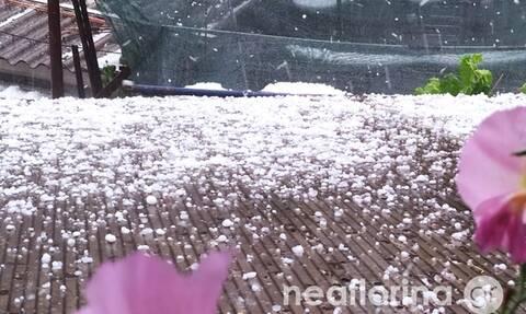 Φλώρινα: Σφοδρή χαλαζόπτωση «έντυσε» την πόλη στα λευκά – Μεγάλα τα προβλήματα (pics+vid)