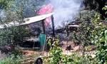 Πτώση αεροσκάφους στην Ηλεία: Συγκλονίζουν τα βίντεο λίγο μετά το μοιραίο δυστύχημα