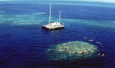 ΟΗΕ: O Μεγάλος Κοραλλιογενής Ύφαλος είναι ένα μνημείο «σε κίνδυνο» λόγω της κλιματικής αλλαγής