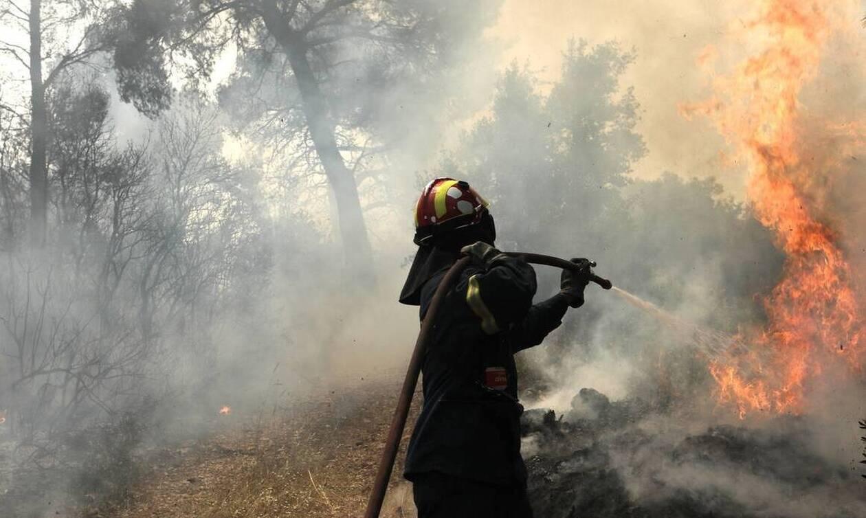 Μεγάλη φωτιά ΤΩΡΑ στην Κρήτη