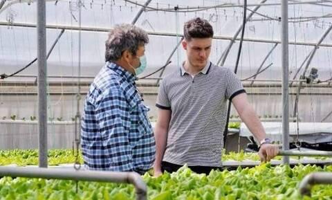 Φοιτητές φτιάχνουν πλατφόρμα ψηφιακών αγορών για αγρότες – Η ομάδα του Farmit.gr στο Newsbomb.gr