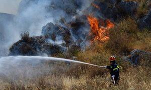 Φωτιά ΤΩΡΑ στο Άνυδρο Τριφυλίας