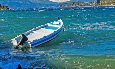 Ψαράς στο Αλεποχώρι έπιασε σκυλόψαρο 300 κιλών δίπλα σε δελφίνια!