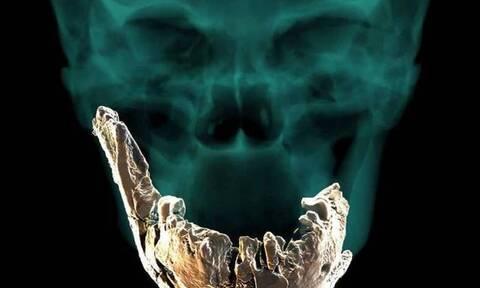 Homo Nesher Ramla: Ανακαλύφθηκε νέο είδος Νεάντερταλ