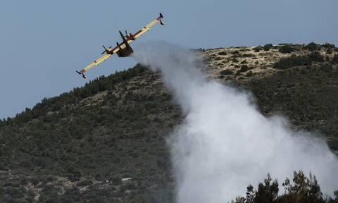 Κρήτη: Σκληρή μάχη με τις φλόγες - Υπό έλεγχο οι φωτιές
