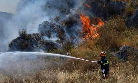 Φωτιά ΤΩΡΑ: Μεγάλη πυρκαγιά στην Σαλαμίνα