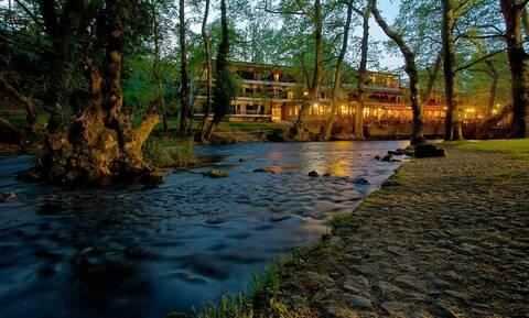 Άφωνοι με το θέαμα - «Θηρίο»... λουζόταν σε ποταμό μεγαλούπολης