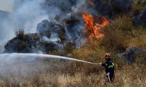 Φωτιά ΤΩΡΑ: Μεγάλη πυρκαγιά στην Μεγαλόπολη