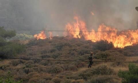Φωτιά στην Κεφαλονιά: Εκκενώνεται το Καπανδρίτι - Ενισχύονται οι πυροσβεστικές δυνάμεις