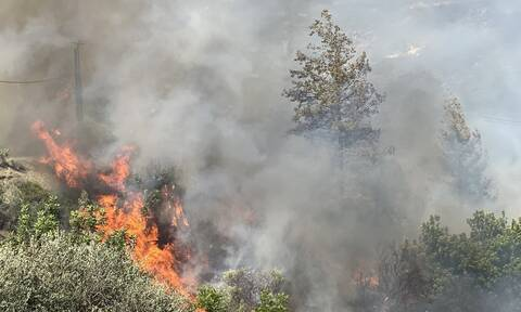 Κύπρος: Εκτός ελέγχου η πυρκαγιά στον Αρακαπά Λεμεσού