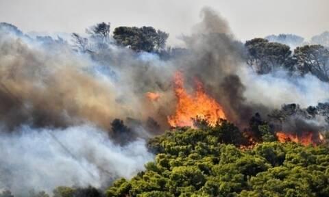Φωτιά τώρα: Πύρινα μέτωπα σε Ριτσώνα και Μέθανα