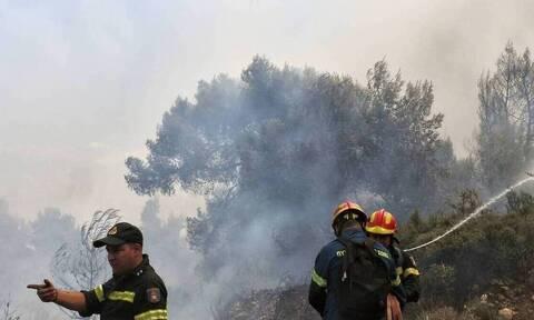 Φωτιά ΤΩΡΑ σε χορτολιβαδική έκταση στην Άνδρο - Ρίψεις από αέρος