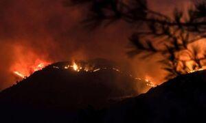 На Кипре в результат пожара погибло 4 человека