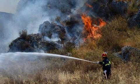 Φωτιά στη Θεσσαλονίκη – Εκκενώνεται ξενοδοχείο στο Τρίλοφο