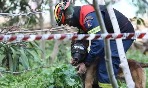 Ιωάννινα: Αγνοείται ηλικιωμένη στη Χρυσοβίτσα - Συναγερμός στην Πυροσβεστική