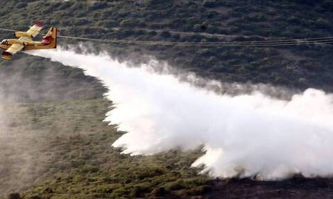 Δήμαρχος Χίου στο Newsbomb.gr: «Ευελπιστούμε πως τις επόμενες ώρες η φωτιά θα έχει σβήσει