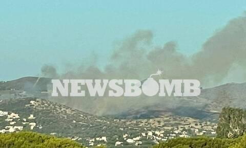Φωτιά στην Ανάβυσσο: Είμαστε σε επιφυλακή λέει ο δήμαρχος Σαρωνικού στο Newsbomb.gr