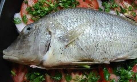 Τηγάνισες ψάρι; Έτσι θα διώξεις την ψαρίλα από το τηγάνι