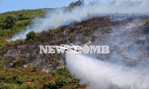 Ρεπορτάζ Newsbomb.gr: Δίπλα σε σπίτια η φωτιά στον Βαρνάβα - Επιχειρεί και το θηριώδες Beriev-200